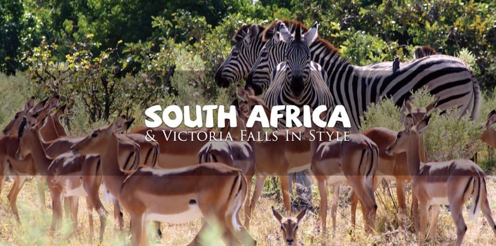 South Africa Gay Tour with Out Adventures Gay Travel